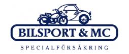 Bilsport